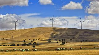 Елън Мъск предлага да спаси австралийски щат от енергийна криза