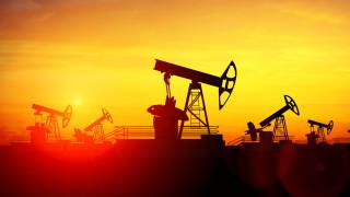 Петролът тръгна нагоре след спад на запасите в САЩ
