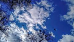 Облачно и ветровито, дъжд в Източна България