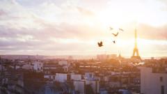 Когато шумът от трафика състарява птиците