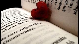 Какви сме ние според това, което четем?