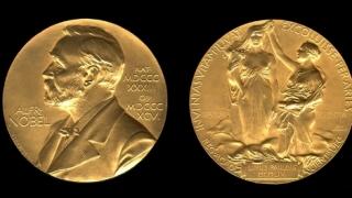 Връчени бяха официално Нобеловите награди за 2007