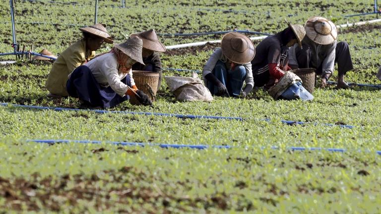 През последните години Пекин прави стъпки към сериозни промени, свързани