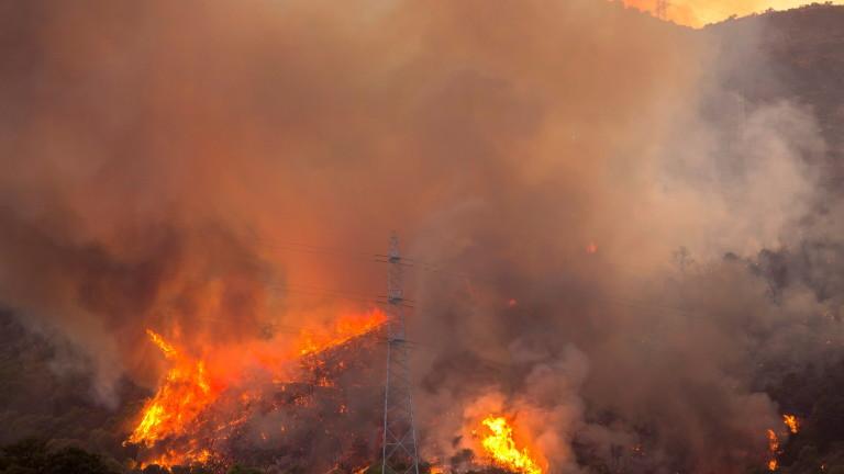 Площта на горския пожар на испанския остров Гран Канария, автономна