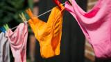 Колко често американците сменят бельото си