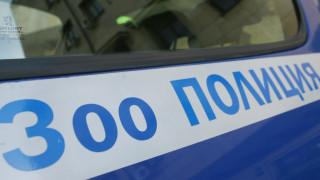 В Свищов разследват сигнал за убийството на котки