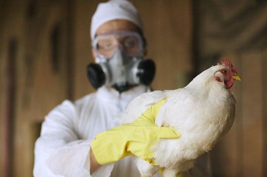 Откриват лаборатория за птичи грип в Аксаково