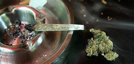 Легализирането на марихуаната доведе до еуфория и на борсата
