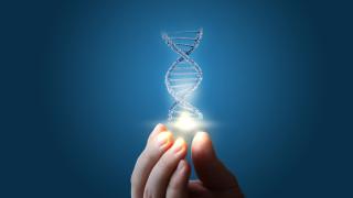 Ключът към отслабването не се крие в ДНК-то