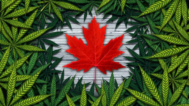 Днес, 17 октомври, Канада се превърна във втората държава (Урогвай