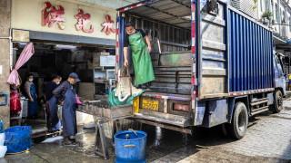 Коронавирус: Пришпорват правителствата по света да забранят консумацията на диви животни