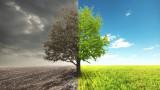 Климатичните промени, насекомите и какво задълбочава проблема още повече