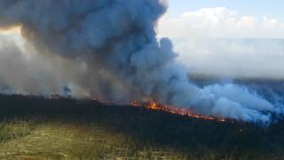 Горските пожари в Арктика отделят 35% повече CO2 през 2020-а в сравнение с цялата 2019-а