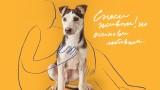 """""""Четири лапи"""" призовава за отговорно отношение към бездомните животни"""