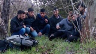Заловиха 7 нелегални мигранти при опит да влязат у нас