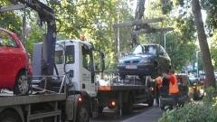 """Паяци"" вдигнаха 19 коли от Борисовата градина"