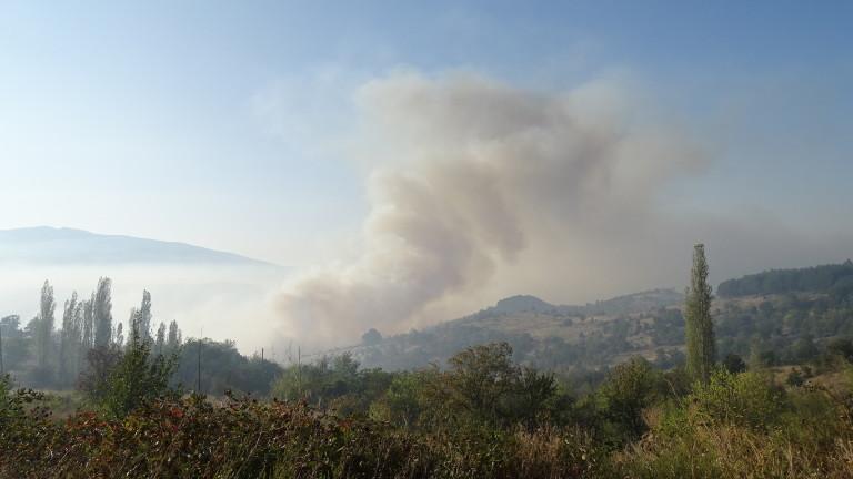Голям пожар избухна в гората над Карлово