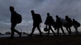 Значително е нараснал броят на мигрантите в Сърбия
