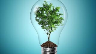 Европа вече не е световен лидер при възобновяемата енергия. Кой я изпревари?