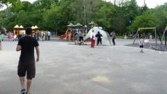 Санитарната сеч в Борисовата градина разтревожи организации