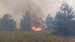 Екстремален индекс за опасност от пожари в 9 области в неделя