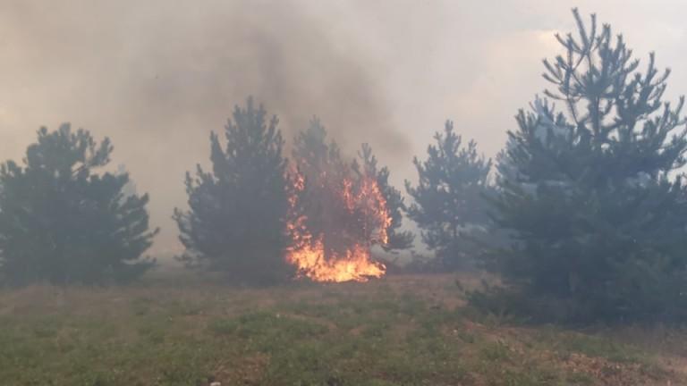 Все още гори борова гора между селата Маточина и Варник.