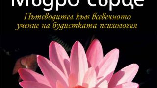 Как да използвате будистката психология в ежедневито си