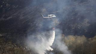 В Африка три пъти повече пожари от Амазония