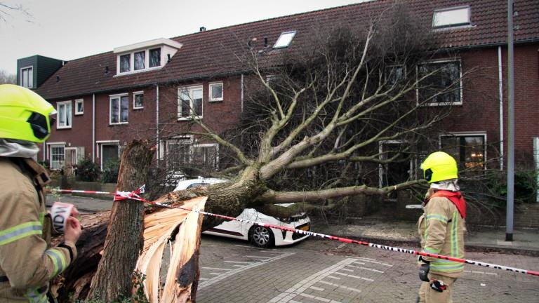 Силните зимни бури, които удариха Европа с урагани ветрове и