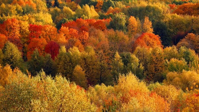 Златната есен продължава