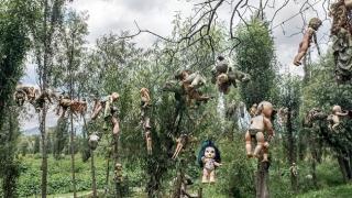 В Япония се организират погребални церемонии за кукли