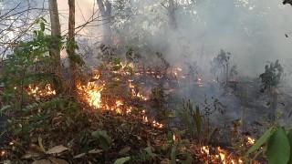 Огън пламна и в Сунгурларе