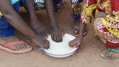 155 млн. души по света са гладували постоянно през 2020 година