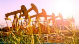Кой колко петрол добива в света?