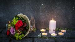 Холандия се опитва да установи как Праляк се е сдобил с отрова