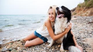 Море + куче = ?