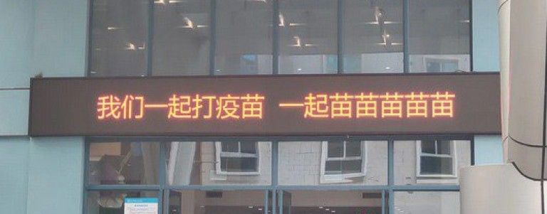 Версия на котешкия лозунг в болница
