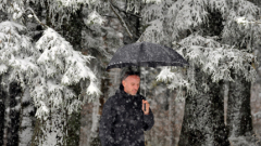 Обилен снеговалеж парализира Острова