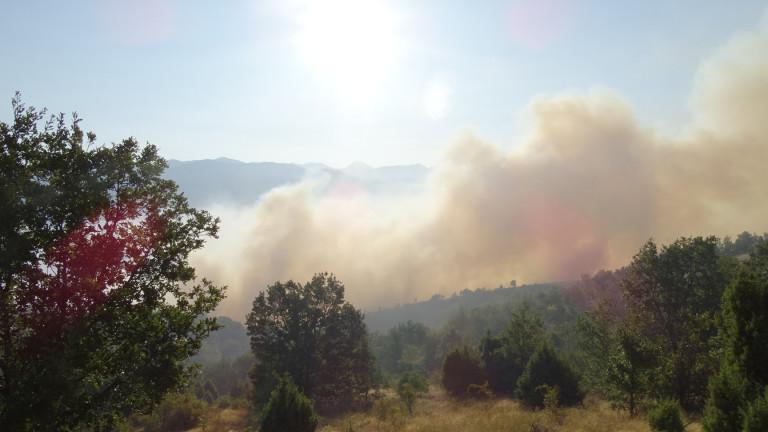 Голям пожар избухна край казанлъшкото село Горно Черковище, съобщава bTV.