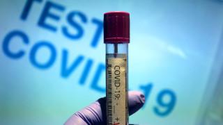COVID-19 нямало да се превърне в чумата на 21 век