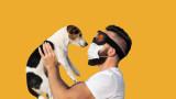Коронавирусът, котките, кучетата и може ли COVID-19 да зарази домашните любимци