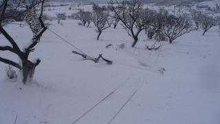Възстановиха електрозахранването в Североизточна България