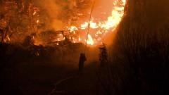 Критично остава положението с пожарите на гръцкия остров Евбея