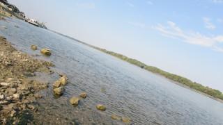 Опасно високо ниво на Дунав