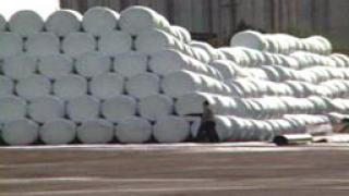 Около 500 бали извозени на сметището край Цалапица