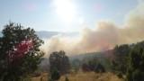 Отново пламъци край село Реброво