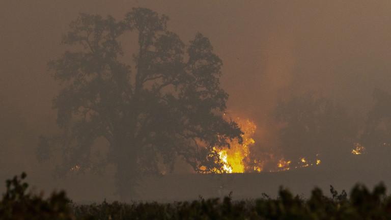 Евакуират над 40 000 души в Лос Анджелис