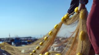 Установиха незаконен улов в езерата Шабла и Дуранкулак
