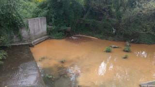 Установиха поредно замърсяване на река Струма