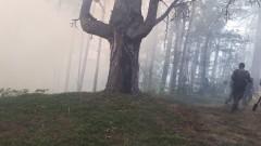 Продължава борбата с пожара в Родопите